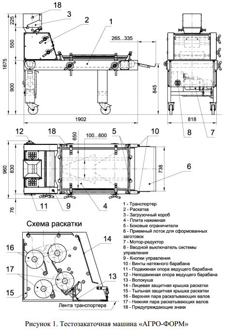 TZM11Ris1